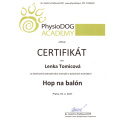 04_physio_dog_hop